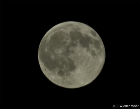 القمر يحتوي على كمية مياه أكبر بكثير من المعتقد Mond