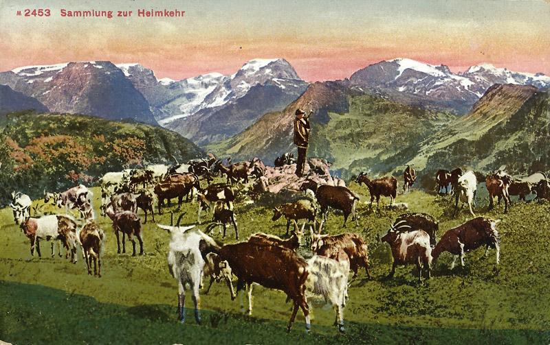braunwald_landschaft_04_800