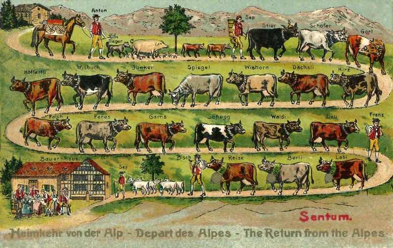 alpenfahrt_04_800